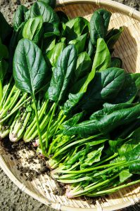Low Carb Raw Spinach